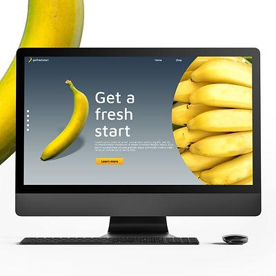 website-on-mac.jpg
