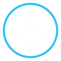 duck-blue-circle.png