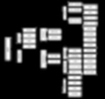 13期 組織図 全体.png