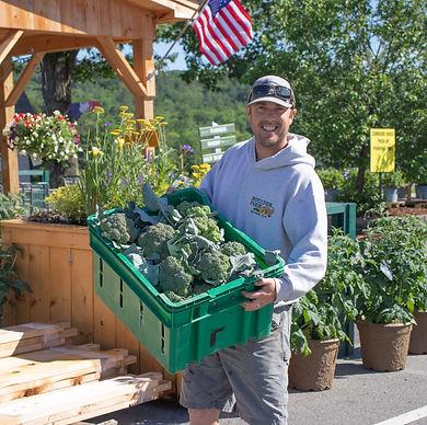 kyle broccoli farm market early summer o