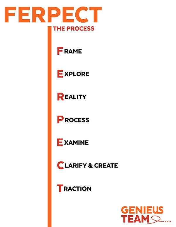 Ferpect-the-process.jpg