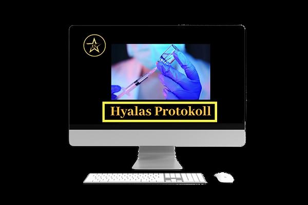 hyalas protokoll.png