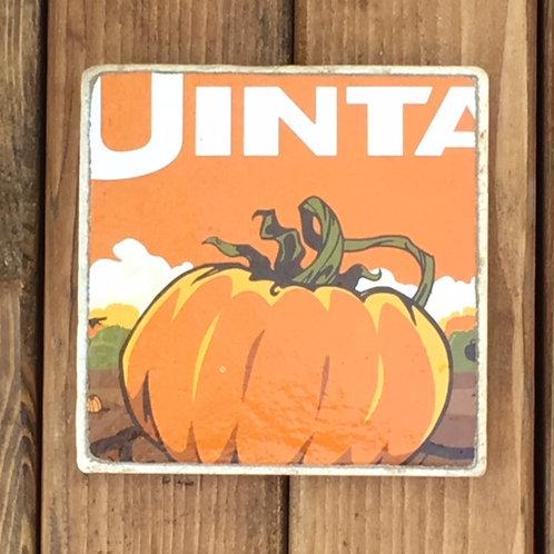 Uinta Punk'n Ale Coaster