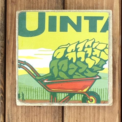 Uinta Hop Nosh IPA Coaster