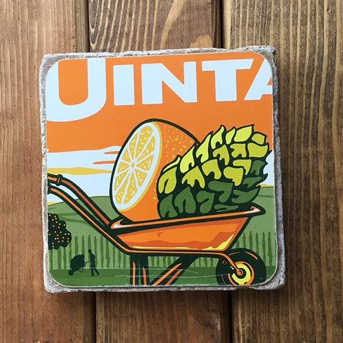 Uinta Hop Nosh Tangerine IPA Coaster