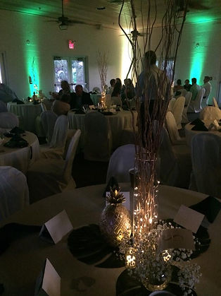 Uplighting At Dinner Accent Sounds And Entertainment