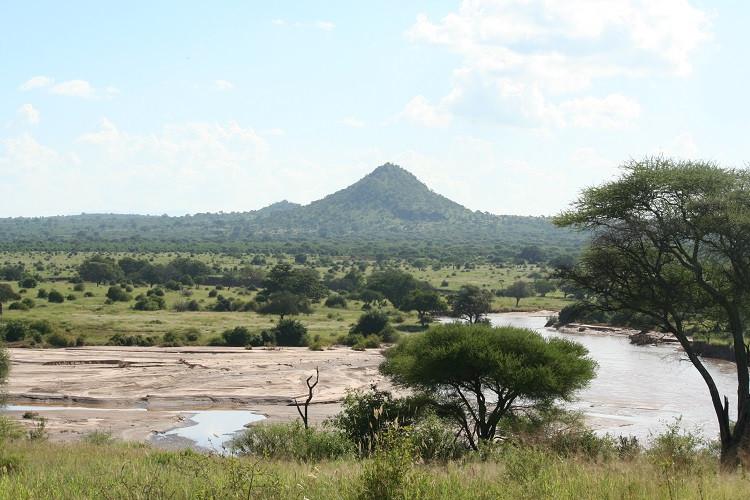 safari parc national du tarangire tanzanie