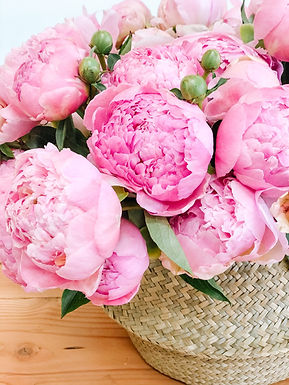 4 weeks of peony bouquets.