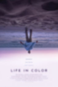 LIFE IN COLOR POSTER.jpg