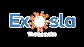Exosla logo final vector black-01 new.pn