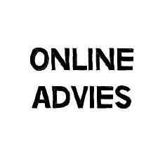 Onlineadvies.png