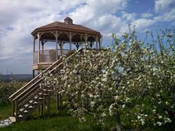 scenery gazebo blossoms