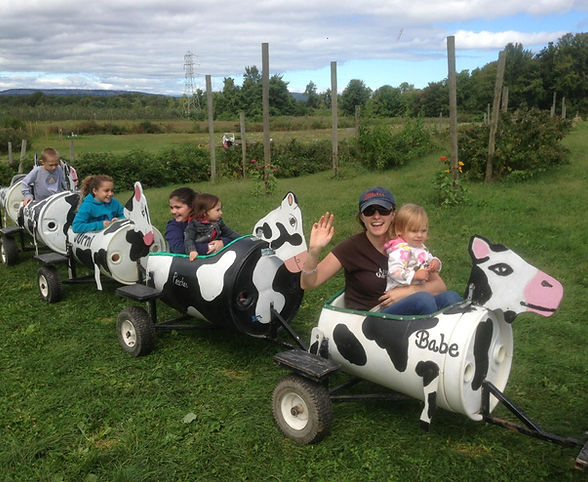 Hurds Family Farm cow train ride around the orchard