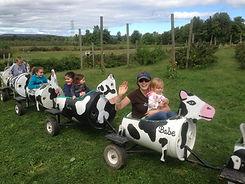 cow train ride kids activity hudson valley ny apple farm
