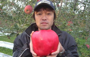 Break an Apple Record