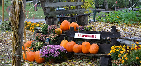 Contact us at Hurds Family Farm, pick your own apples, pumpkins and fresh vegetables