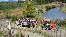 activities hayride farm pick your own.jpg