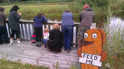 Fish Feeding Pond