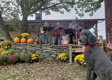hudson valley bluegrass express live music fall hurds farm.jpg