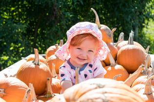 Pumpkin Fiesta
