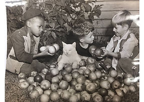 3 kids holding apples and a cat