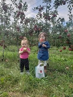 cortlyn evy apples.jpg