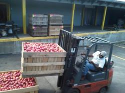apple picking bin fork truck