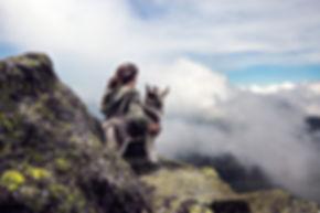 adventure-clouds-dog-36372.jpg