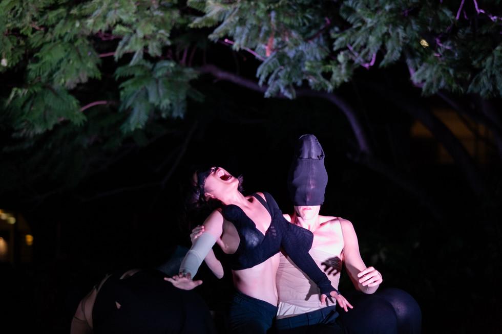 Phluxus2 Dance Collective