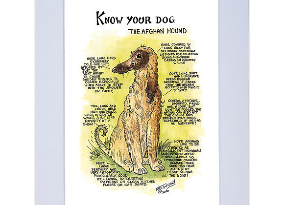 Afghan Hound - A4 Mounted Print - Know Your Dog - Pack of 6