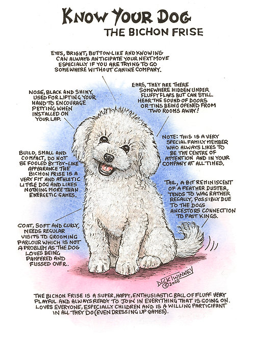 Bichon Frise - Greetings Card - Know Your Dog - Pack of 6