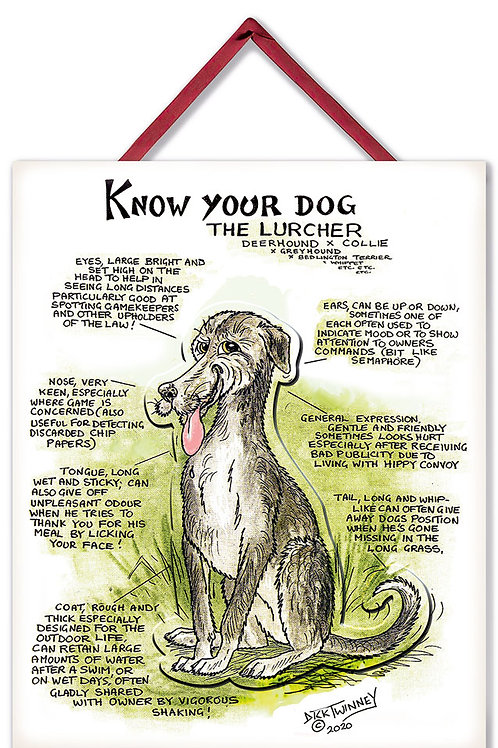 Lurcher - 3D Wall Plaque - Know Your Dog - Pack of 6