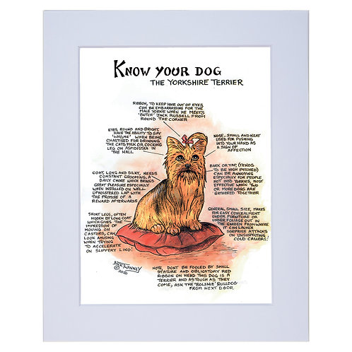 Yorkshire Terrier - A4 Mounted Print - Know Your Dog - Pack of 6