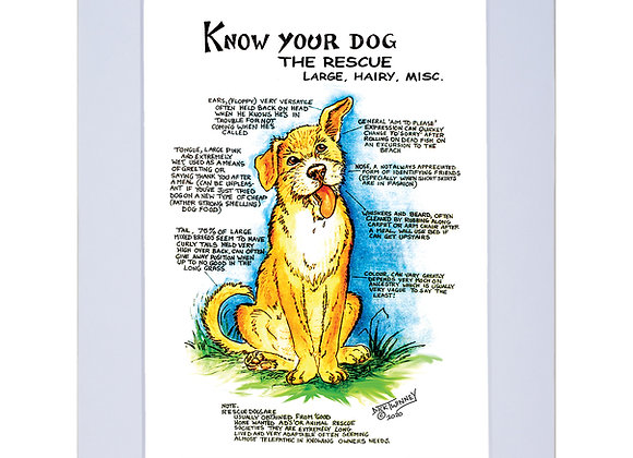 Rescue Dog Large - A4 Mounted Print - Know Your Dog - Pack of 6