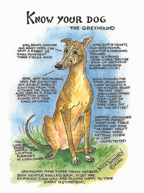 Greyhound - Greetings Card - Know Your Dog - Pack of 6