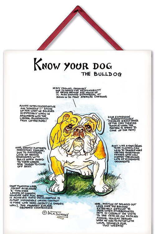 Bulldog - 3D Wall Plaque - Know Your Dog - Pack of 6