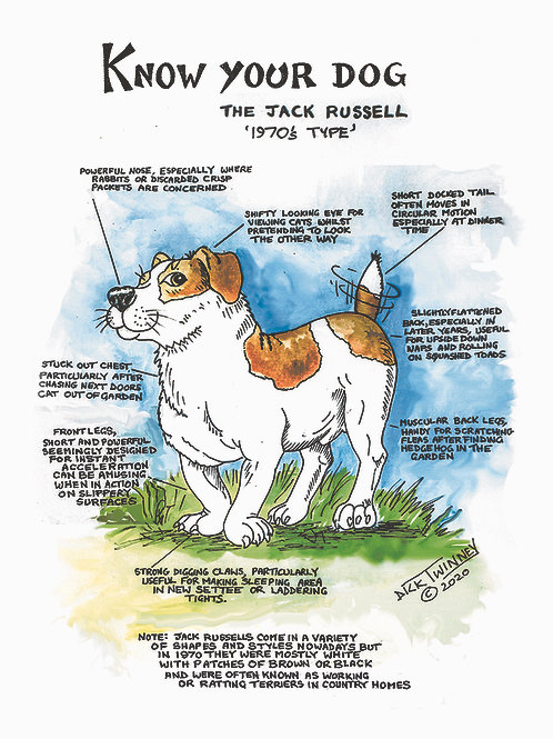 Jack Rusell - Greetings Cards - Know Your Dog - Pack of 6