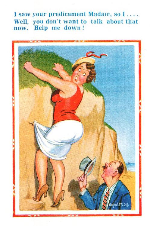 Pridicament - Donald McGill - Postcards Pack of 48