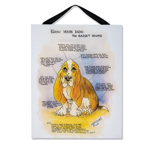 Bassett - Wall Plaque - Know Your Dog - Pack of 6