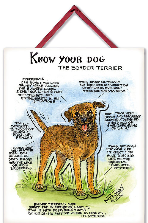 Border Terrier - 3D Wall Plaque - Know Your Dog - Pack of 6