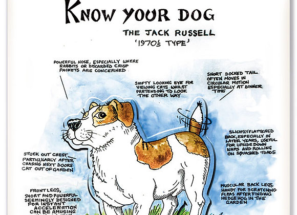 Jack Rusell - 3D Wall Plaque - Know Your Dog - Pack of 6