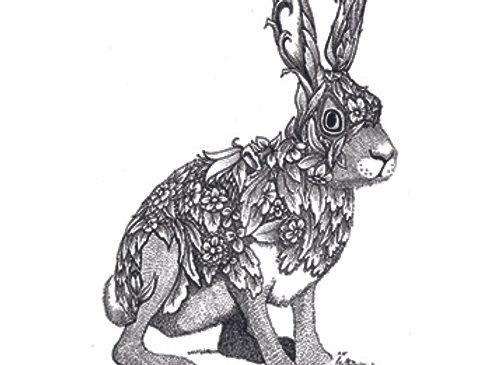 004628 Hare