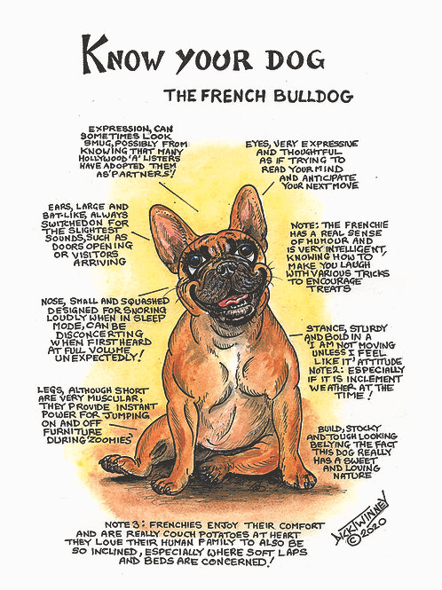 French Bull Terrier - Wall Plaque - Know Your Dog - Pack of 6