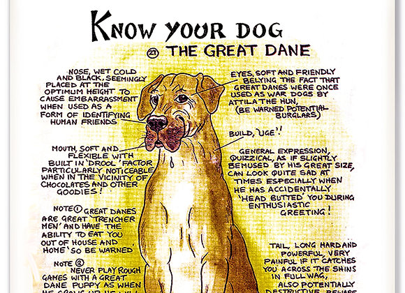 Great Dane - 3D Wall Plaque - Know Your Dog - Pack of 6