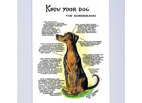 Doberman - A4 Mounted Print - Know Your Dog - Pack of 6