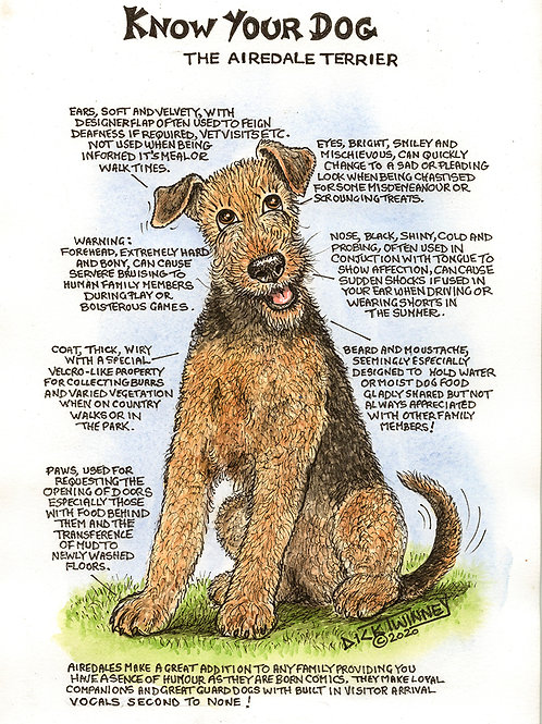 Airedale - Greetings Card - Know Your Dog - Pack of 6
