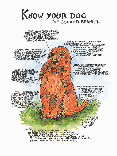 Cocker Spaniel - Greetings Card - Know Your Dog - Pack of 6