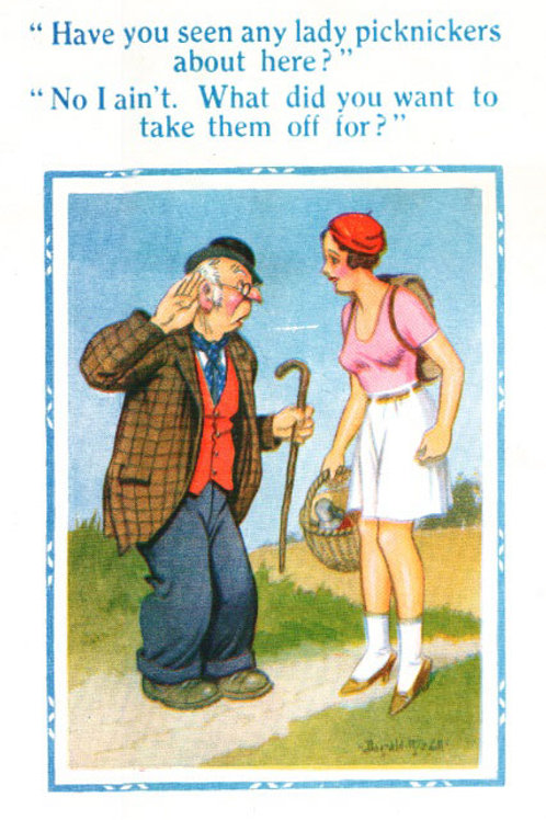 Picknickers - Donald McGill - Postcards Pack of 48