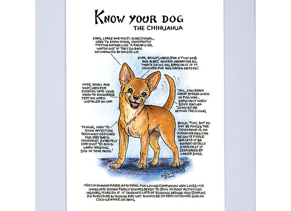 Chihuahua - A4 Mounted Print - Know Your Dog - Pack of 6