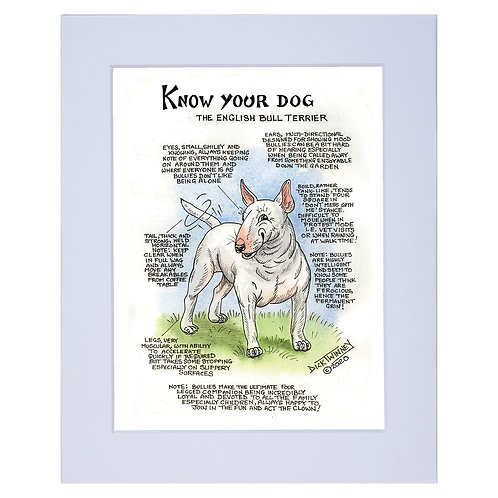 English Bull Terrier - A4 Mounted Print - Know Your Dog - Pack of 6